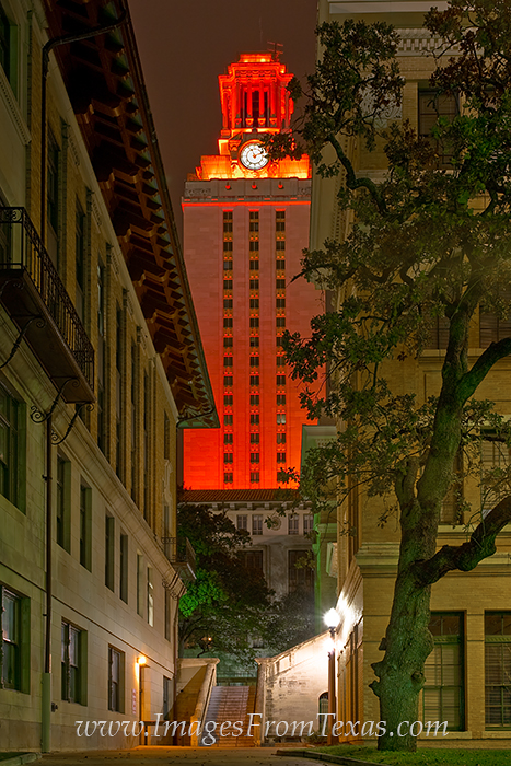 Texas Tower,UT Tower prints,40 acres, photo