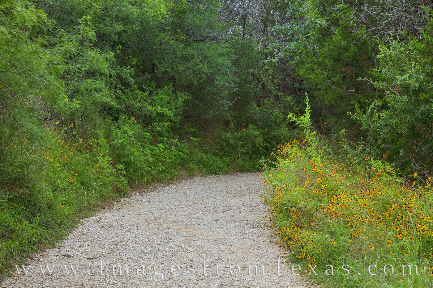 mckinney falls, lower falls, austin parks, urban park, texas state parks, summer, photo
