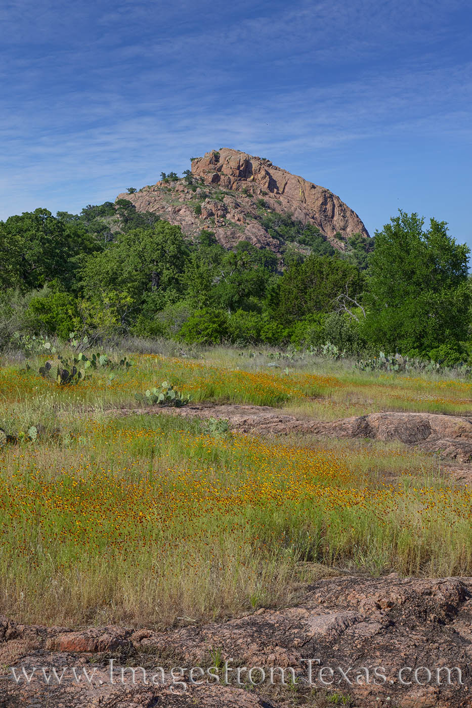 turkey peak, enchanted rock, wildflowers, texas state parks, explore, hill country, photo