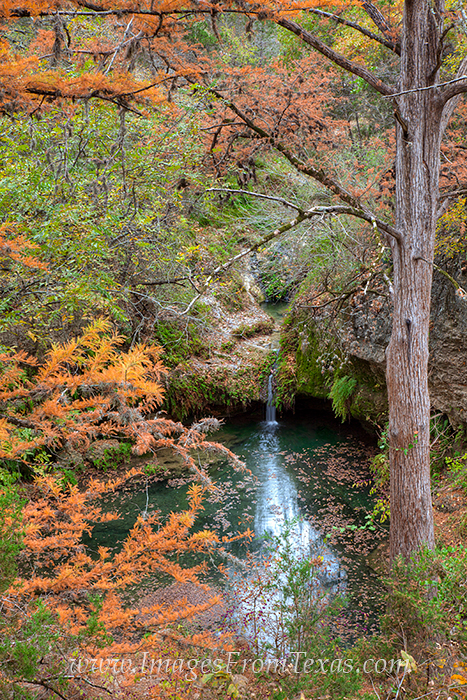 Tucked away in a corner of Pedernales Falls State Park, Twin Falls is a gem under the tall red-oak and cypress. Sometimes it...