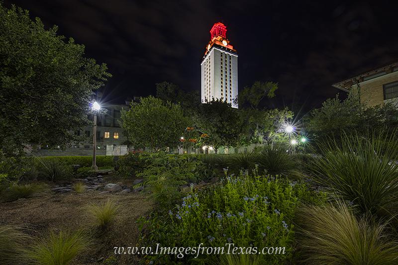 UT Tower,Texas Tower,Orange Texas tower,UT tower images,Texas Tower images,austin texas images,austin icons,austin texas,University of Texas Tower, photo
