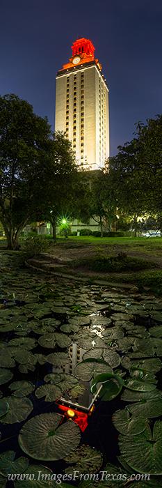 UT Tower photos,UT Tower,Texas Tower images,University of Texas campus,Austin Texas,Austin TX,Austin images, photo