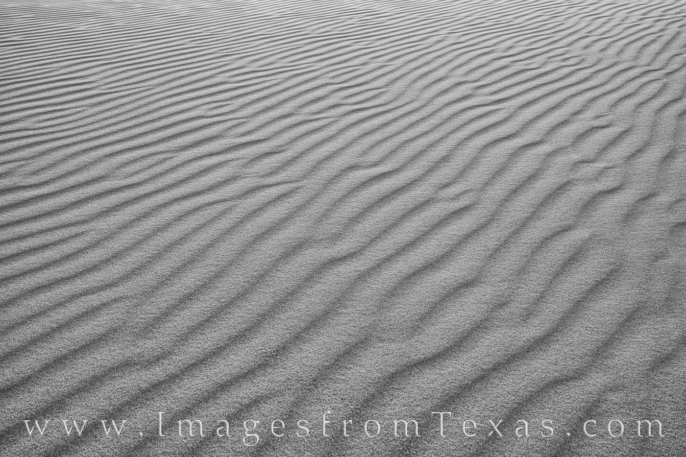 sand dunes, black and white, sandhills, sandhills state park, texas parks, sand, monahans, I-20, wind, photo