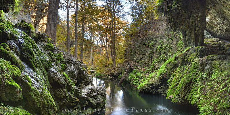 westcave preserve,texas grotto,hill country photos,texas hill country,texas hill country prints, photo