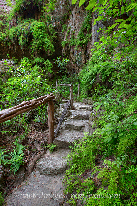 texas hill country,westcave preserve,hamilton pool,hill country images, photo