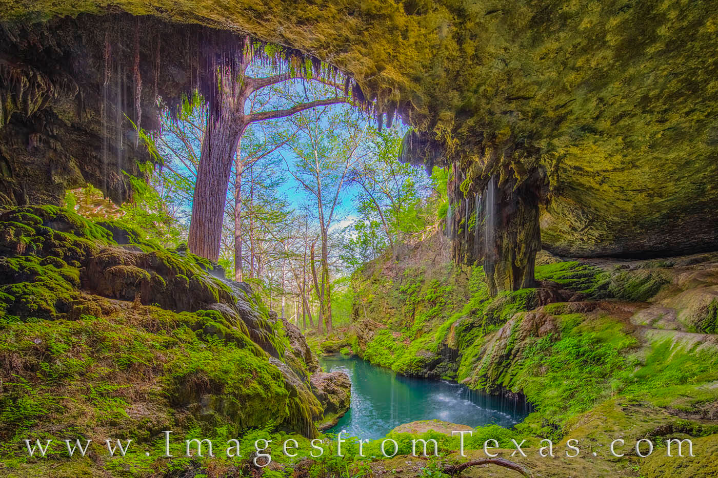westcave preserve, texas hill country, texas hill country waterfall, texas images, texas prints, photo