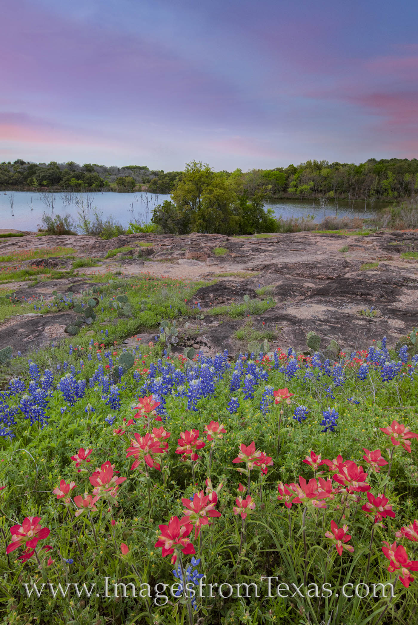 bluebonnets, paintbrush, inks lake, state parks, sunset, hill country drives, peace, photo
