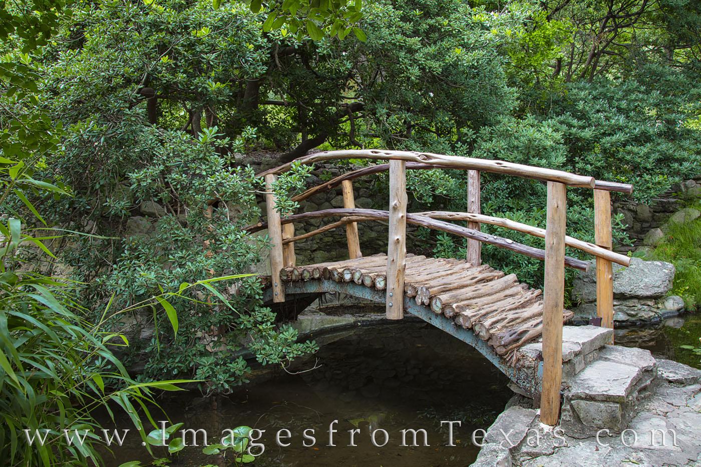 zilker botanical gardens, zilker gardens, austin texas, photo